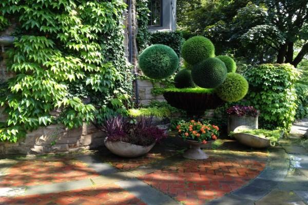 Jardín con bellos arbustos