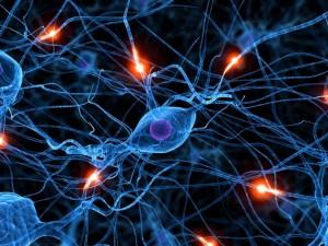 Postal: Neuronas comunicándose