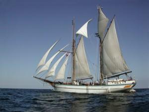 Postal: Barco TSN 617