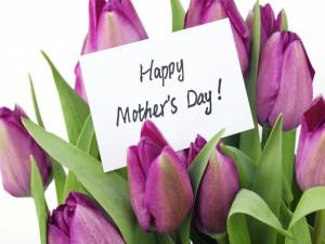 Tulipanes con un cartel para mamá