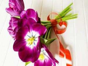 Postal: Ramo de tulipanes abiertos