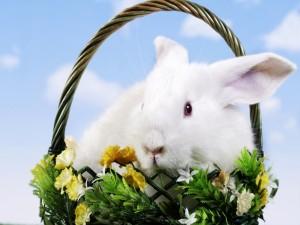 Cesta de mimbre con un conejito y flores