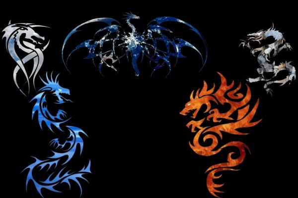 Dragones diferentes