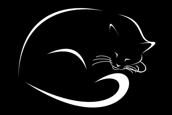Gato digital dormido