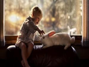 Niño jugando con un conejito blanco