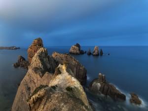 Mirando el mar desde las rocas