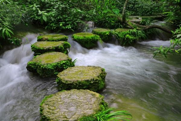 Bonito camino de rocas para cruzar el río