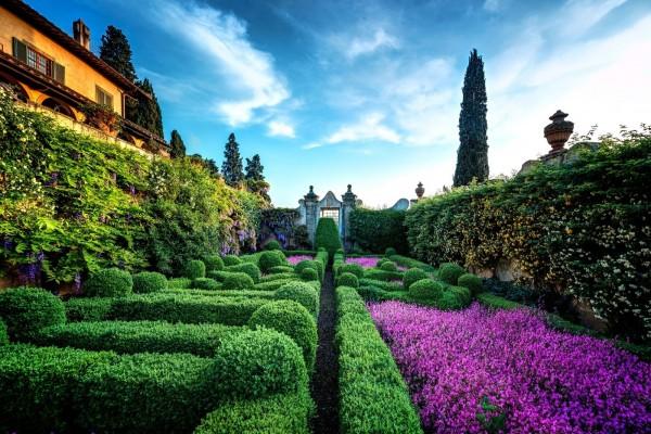 Bonito jardín con plantas y flores de colores