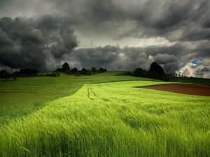 Postal: Se avecina la tormenta