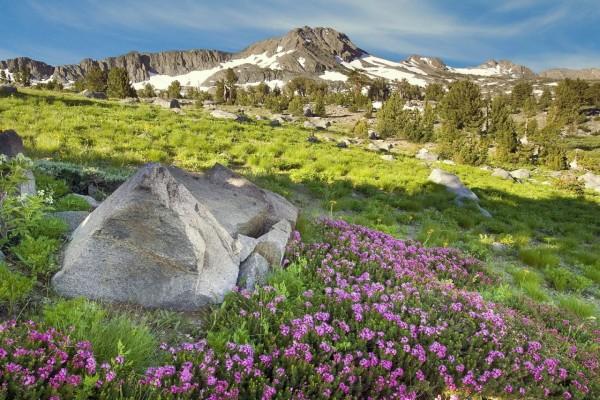 Bonito día de primavera en las montañas