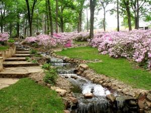 Cascada y flores en el parque
