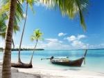 Bote a orillas de una playa con palmeras