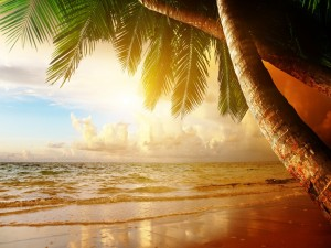 Postal: Puesta de sol en la costa