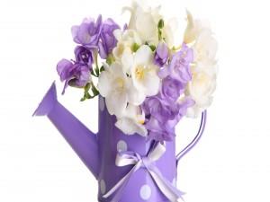 Postal: Regadera con flores blancas y violetas