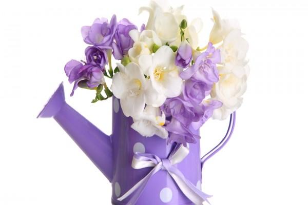 Regadera con flores blancas y violetas