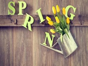Postal: ¡Va llegando la Primavera!
