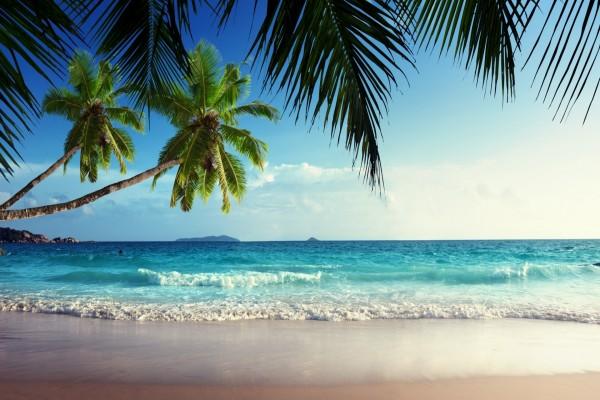 Observando las olas desde la playa