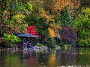 Lago y jardín en otoño