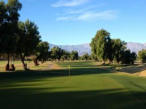 Árboles en el campo de golf