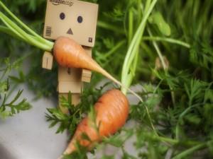 Postal: Danbo con unas zanahorias