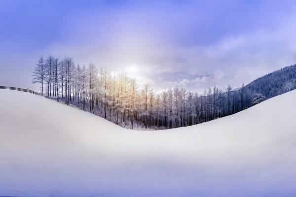 Ladera nevada