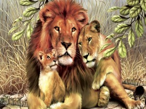 Postal: Familia de leones
