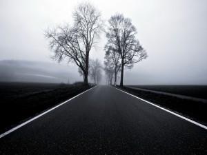 Solitaria y fría carretera