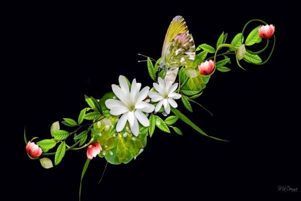 Flores y una mariposa