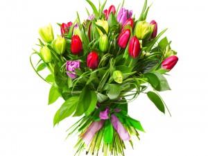 Postal: Ramo de tulipanes y hojas verdes