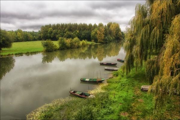 Botes en la orilla verde del río