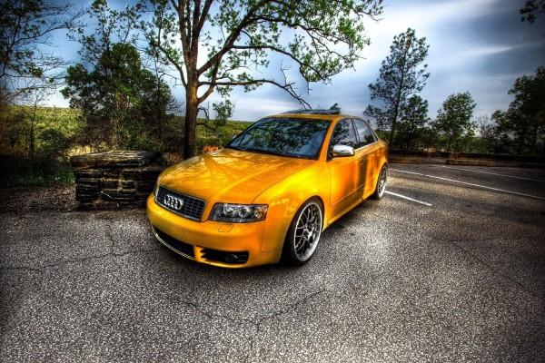 Un Audi a la sombra de los árboles