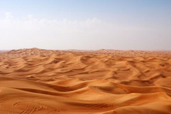 Las dunas del desierto