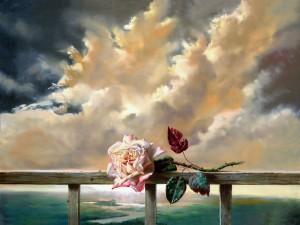 Postal: Rosa solitaria