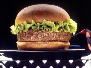 Hamburguesa de carne y lechuga