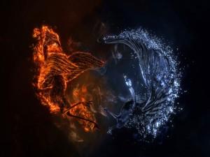 Ave de fuego y ave de agua