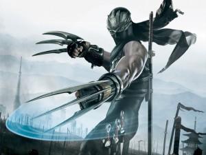Postal: Ninja Gaiden II