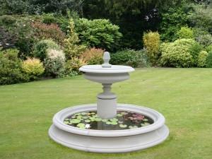 Fuente con nenúfares en el jardín