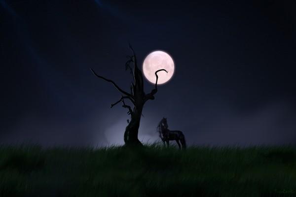 Un caballo negro y luna llena