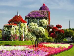 Todo cubierto de bellas flores