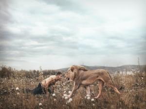 Confrontación entre un hombre y un león