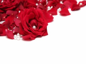 Postal: Pétalos de rosa y perlas