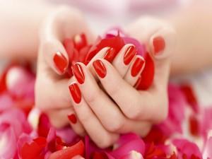 Pétalos de rosa en las manos de una mujer