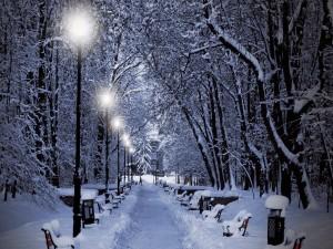 Postal: Camino iluminado y cubierto de nieve