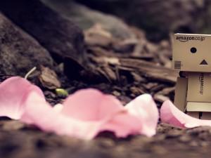 Postal: Danbo y pétalos rosas