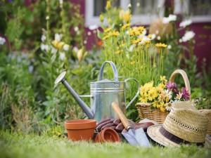 Flores y utensilios en el jardín