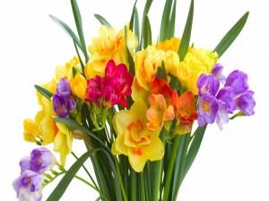 Postal: Colorido ramo con flores