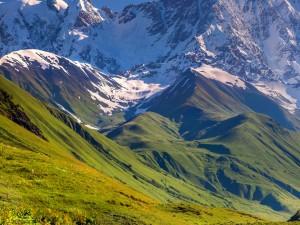Postal: Montañas con hierba verde y nieve