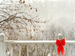 Postal: Valla de madera con nieve y un lazo rojo