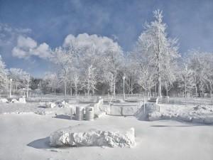 Postal: Un parque completamente blanco