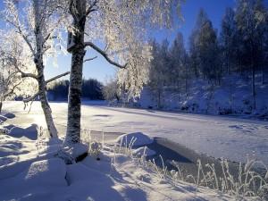 Un río congelado en invierno